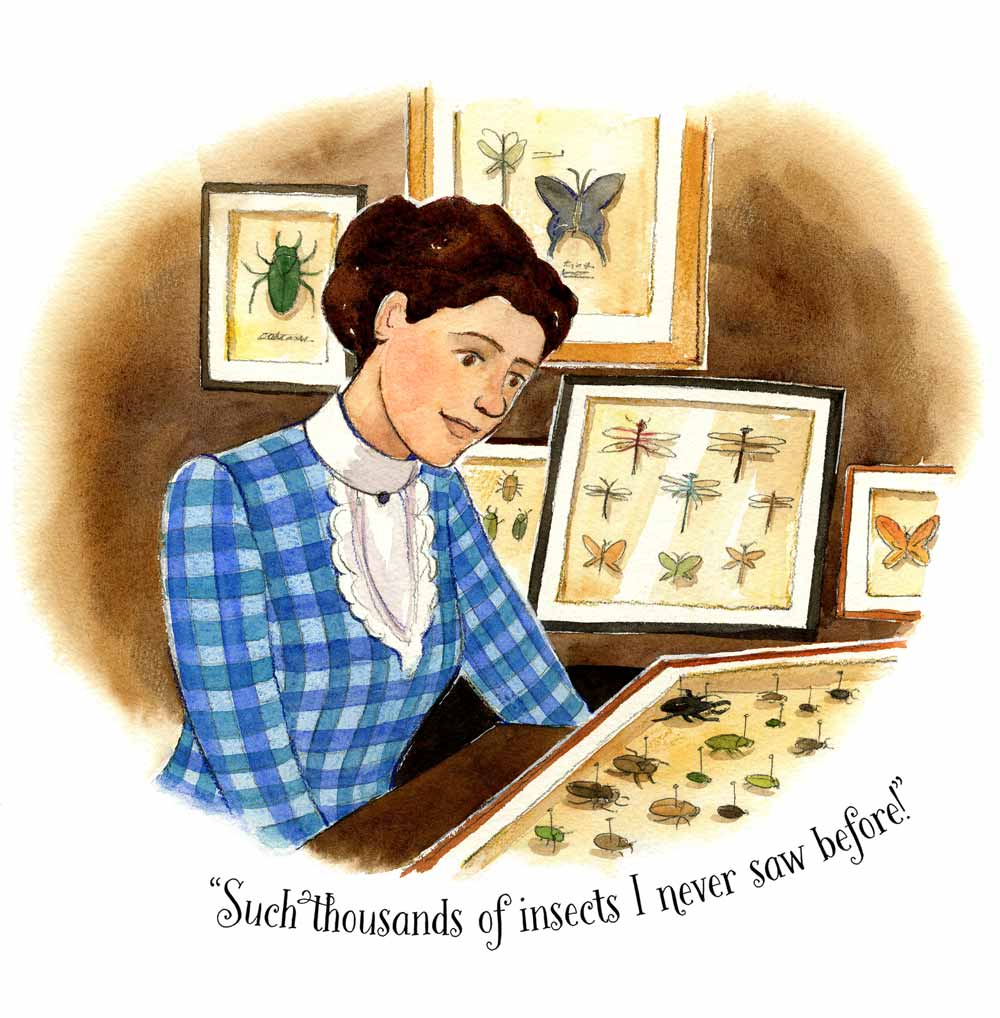 Watercolor illustration spot by Jessica Lanan showing a young woman with brown hair and a blue gingham late 19th-century dress looking at numerous cases of insects mounted with pins.